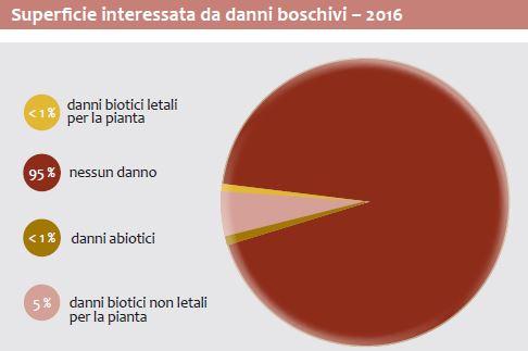 Superficie interessata da danni boschivi – 2016