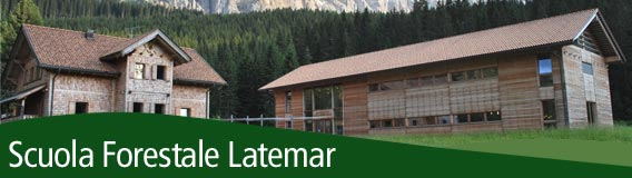 Scuola Forestale Latemar