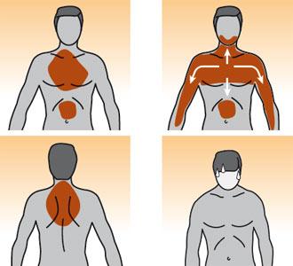 Segnale d allarme l infarto cardiaco nella donna e nell for Bruciore alla schiena in alto